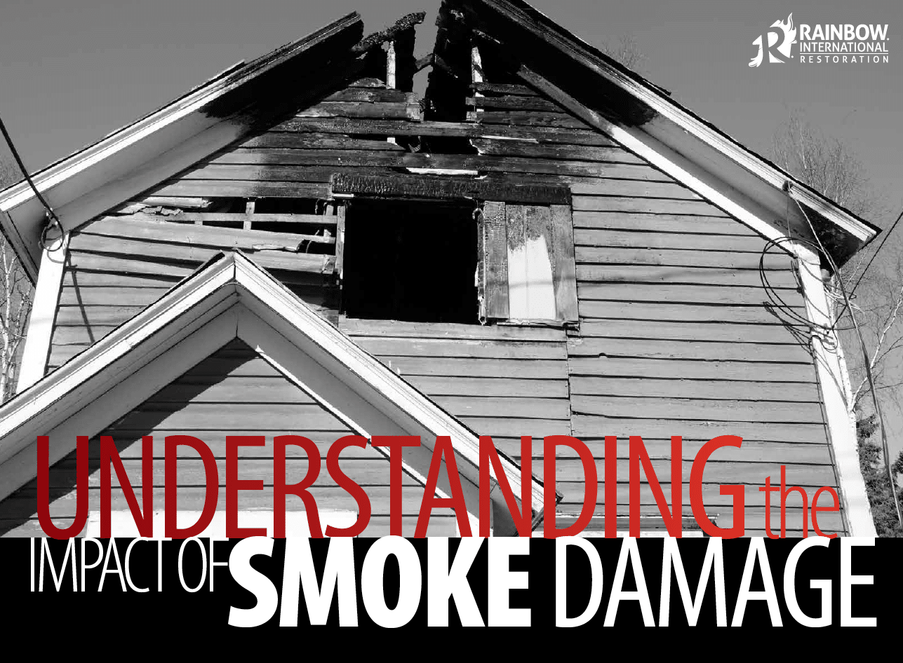 Understanding the Impact of Smoke Damage