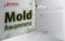 Mold Awareness