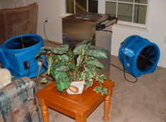 Large fans used for drying