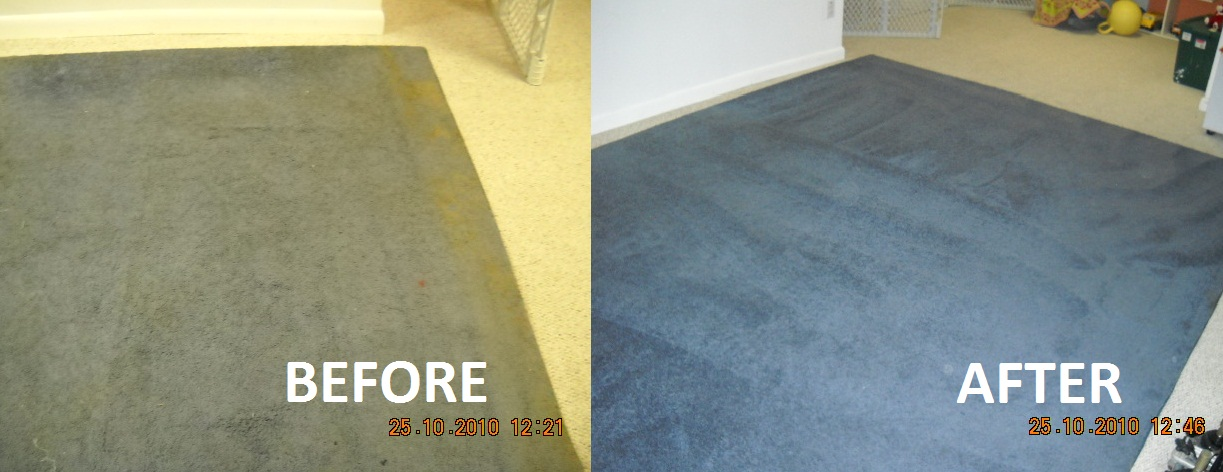 Carpet Cleaners Celina Rainbow International 39 S Service Professionals Follow The Insute Of