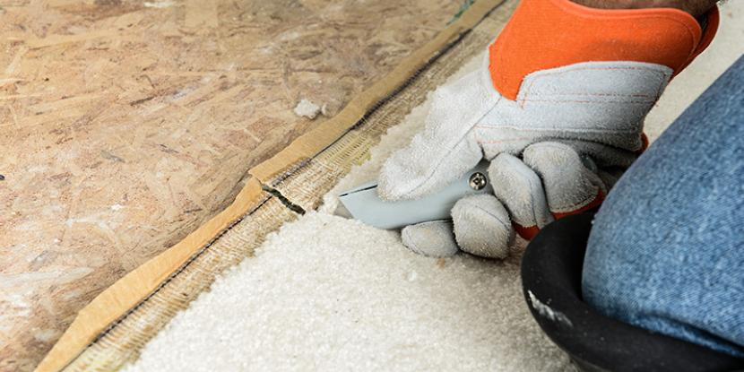 Who pays for carpet cleaning: tenant or landlord? Determining responsibility depends on several factors. Check out Rainbow International's tips here.