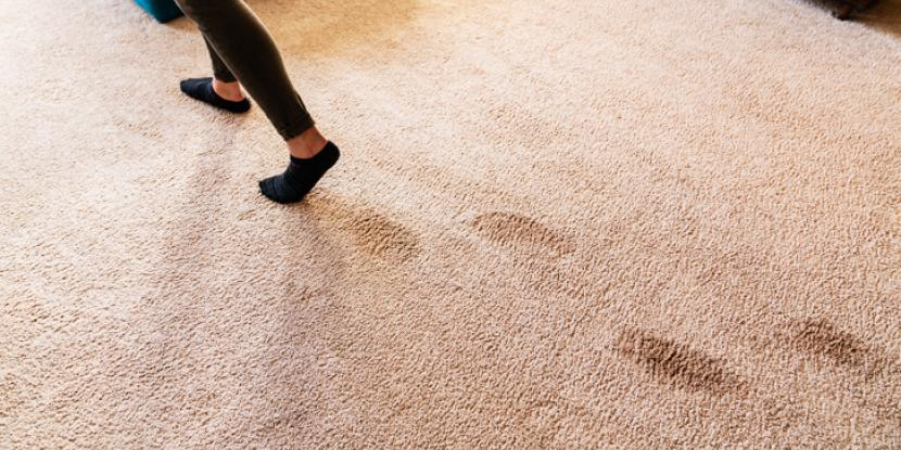 Are you a landlord or property manager evaluating your units' carpet? Learn what is not and what is considered normal wear and tear on carpet.