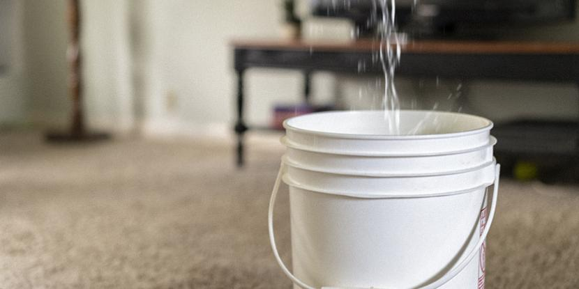 Uh-oh, has your ceiling sprung a leak? Water leaking through a ceiling is never ok! Learn how to stop water from leaking through the ceiling.