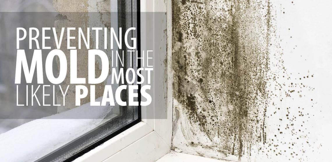 preventing mold in the most likely places